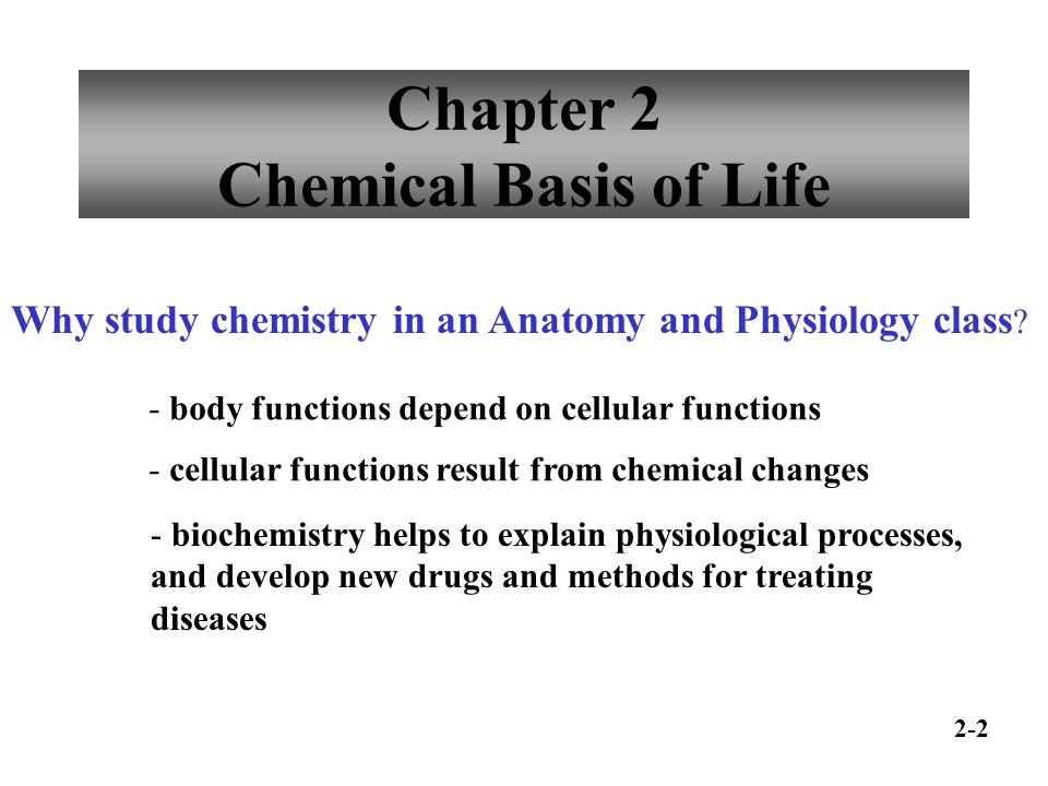 Chapter 2 Chemical Basis of Life Why study chemistry in an Anatomy ...
