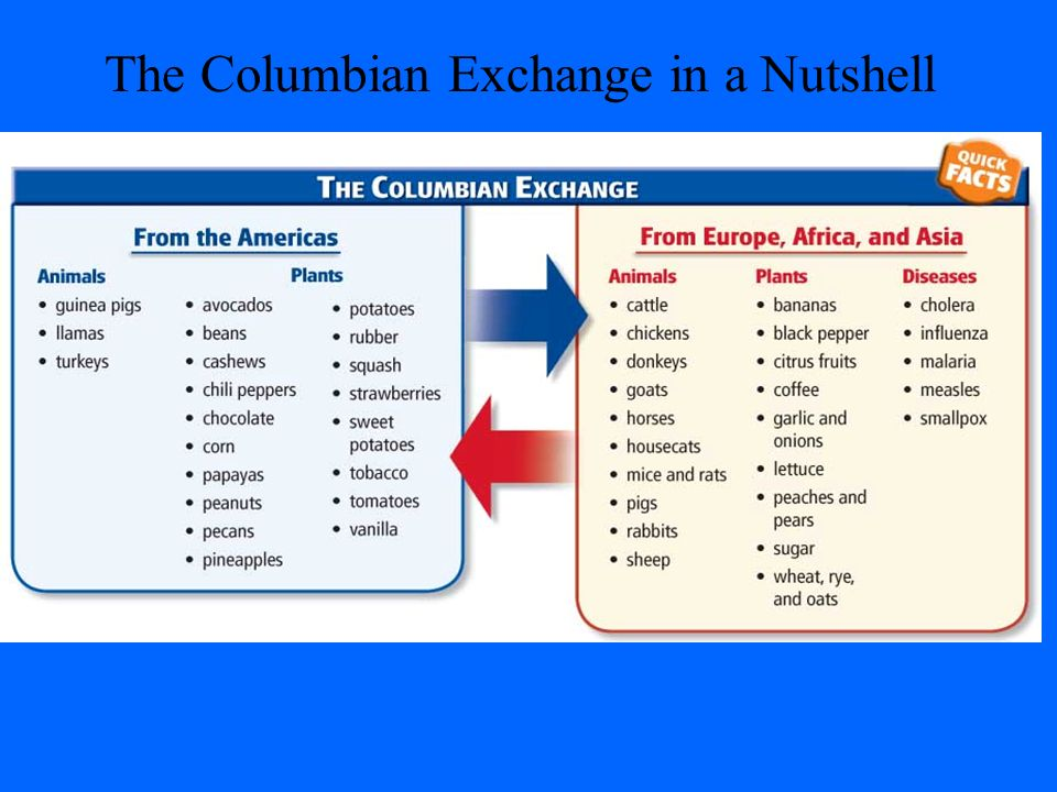 Columbian exchange worksheets pdf
