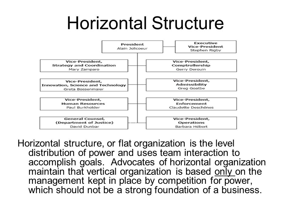 Horizontal Structure Horizontal structure, or flat organization is the level distribution of power and uses team interaction to accomplish goals.