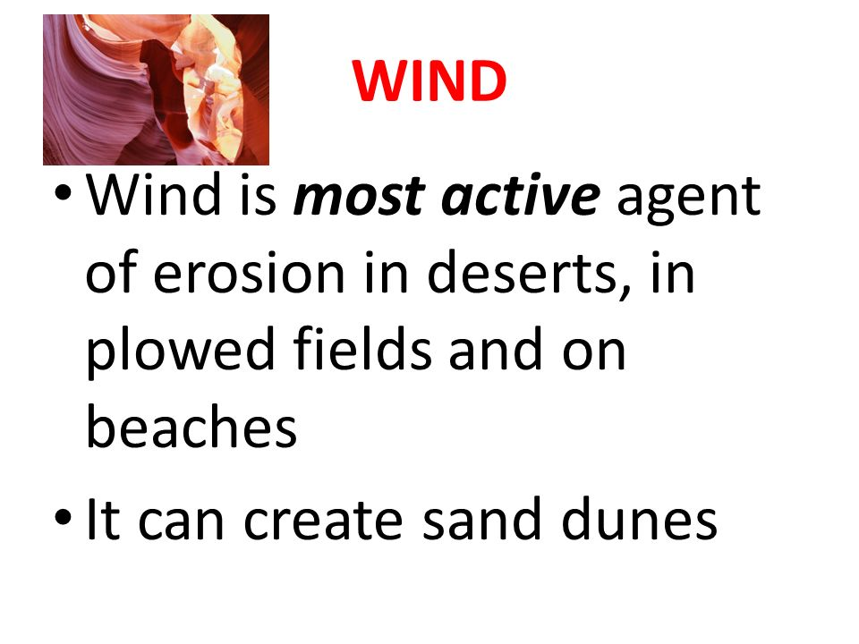 WIND Wind is most active agent of erosion in deserts, in plowed fields and on beaches It can create sand dunes