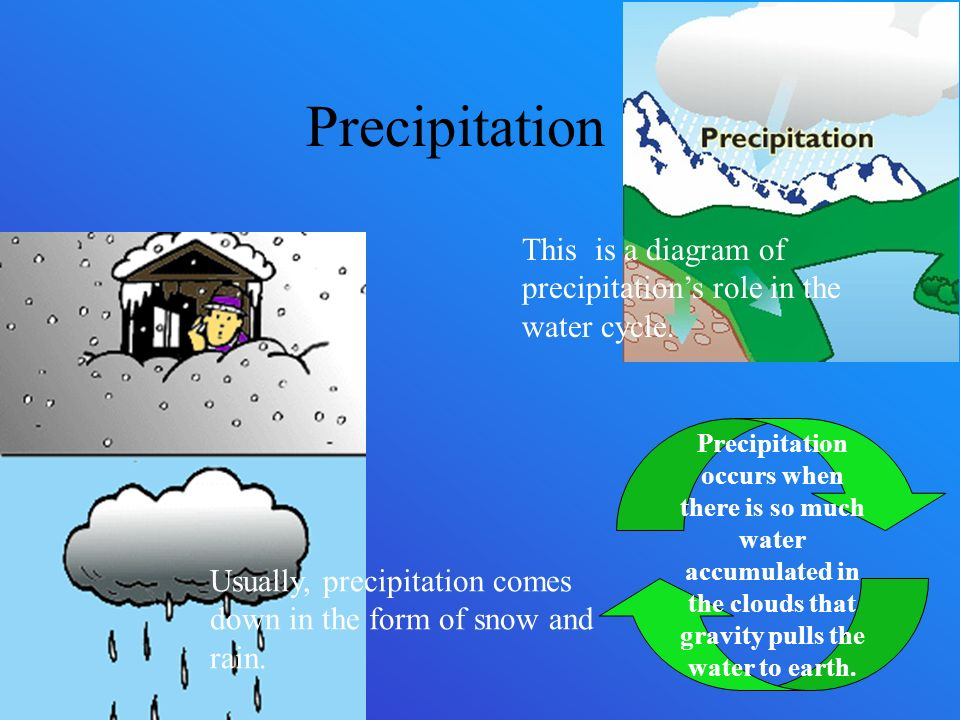the water cycle by nash guyre  condensation the water droplets on    precipitation usually  precipitation comes down in the form of snow and rain  this is