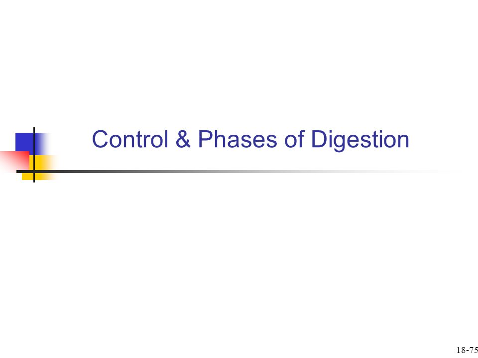 Control & Phases of Digestion 18-75
