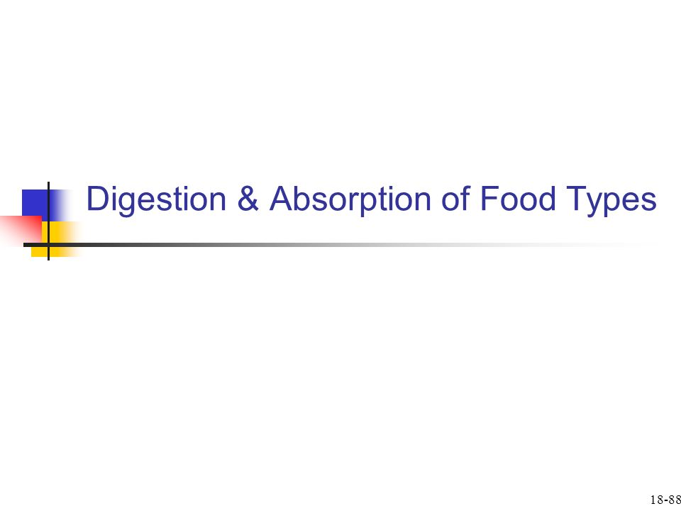 Digestion & Absorption of Food Types 18-88
