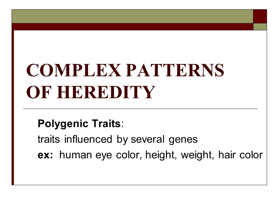 Complex Patterns Of Heredity Polygenic Traits Traits Influenced By