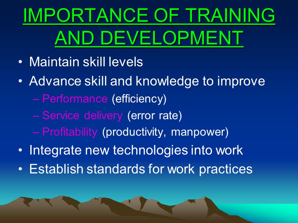 IMPORTANCE OF TRAINING AND DEVELOPMENT Maintain skill levels Advance skill and knowledge to improve –Performance (efficiency) –Service delivery (error
