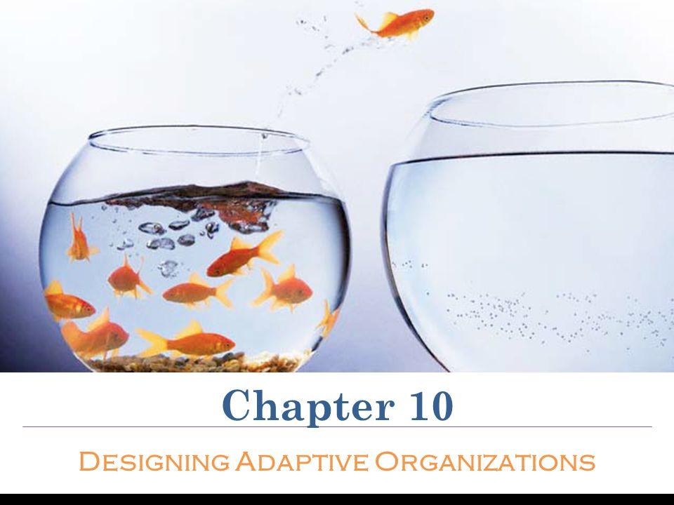 Chapter 10 Designing Adaptive Organizations