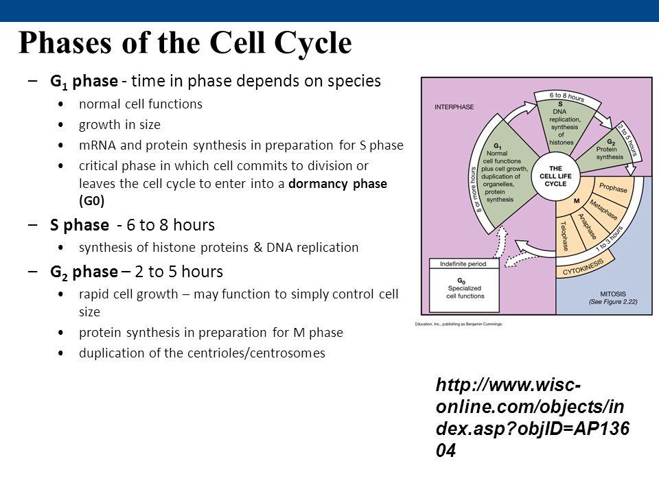 campbell biology online