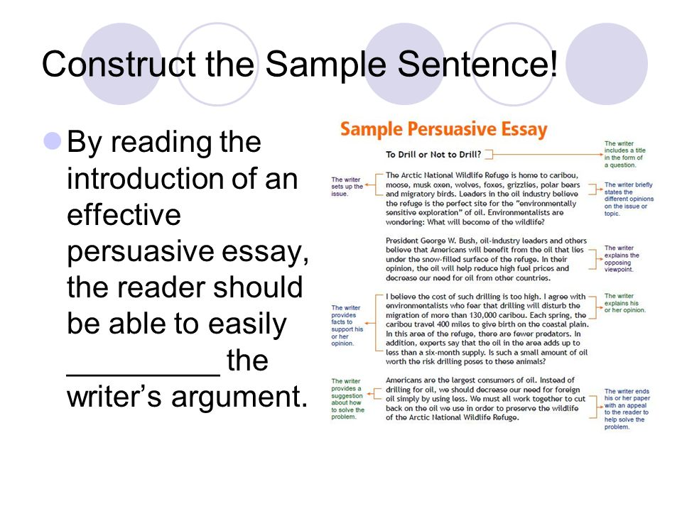 examples of good persuasive essays