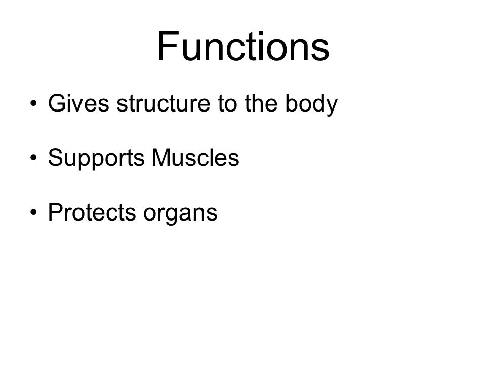 skeletal and muscular systems. skeletal system functions gives, Human body