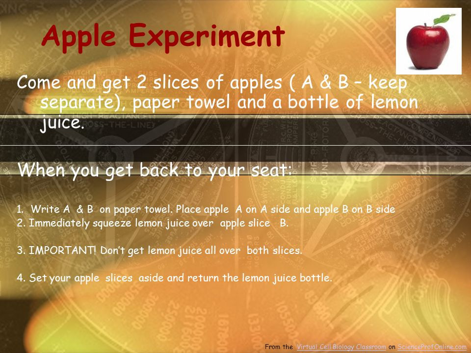 Apple Experiment Come and get 2 slices of apples ( A & B – keep separate), paper towel and a bottle of lemon juice.