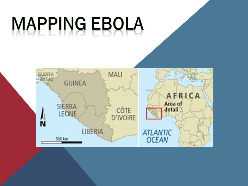 Take The Quiz Ebola is a severe often fatal illness in humans