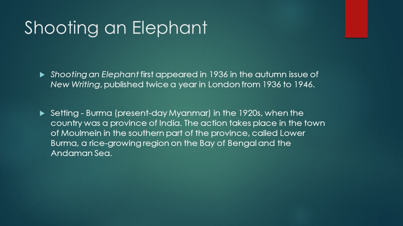 purpose of the essay shooting an elephant  purpose of the essay shooting an elephant