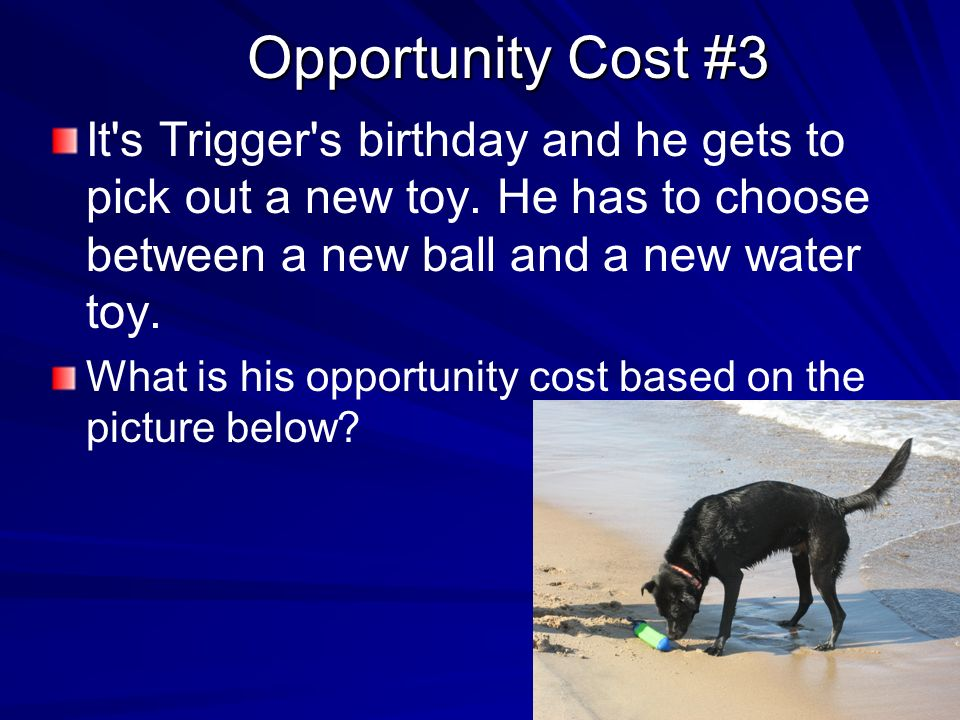 Question on opportunity cost.?