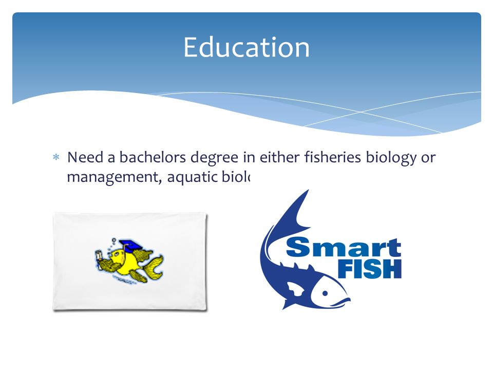 Biology or Zoology Degree?