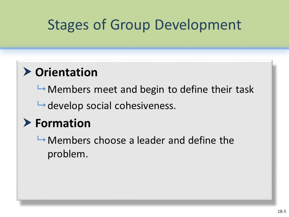 Stages of Group Development  Orientation  Members meet and begin to define their task  develop social cohesiveness.