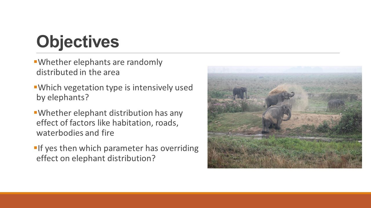 Objectives  Whether elephants are randomly distributed in the area  Which vegetation type is intensively used by elephants.