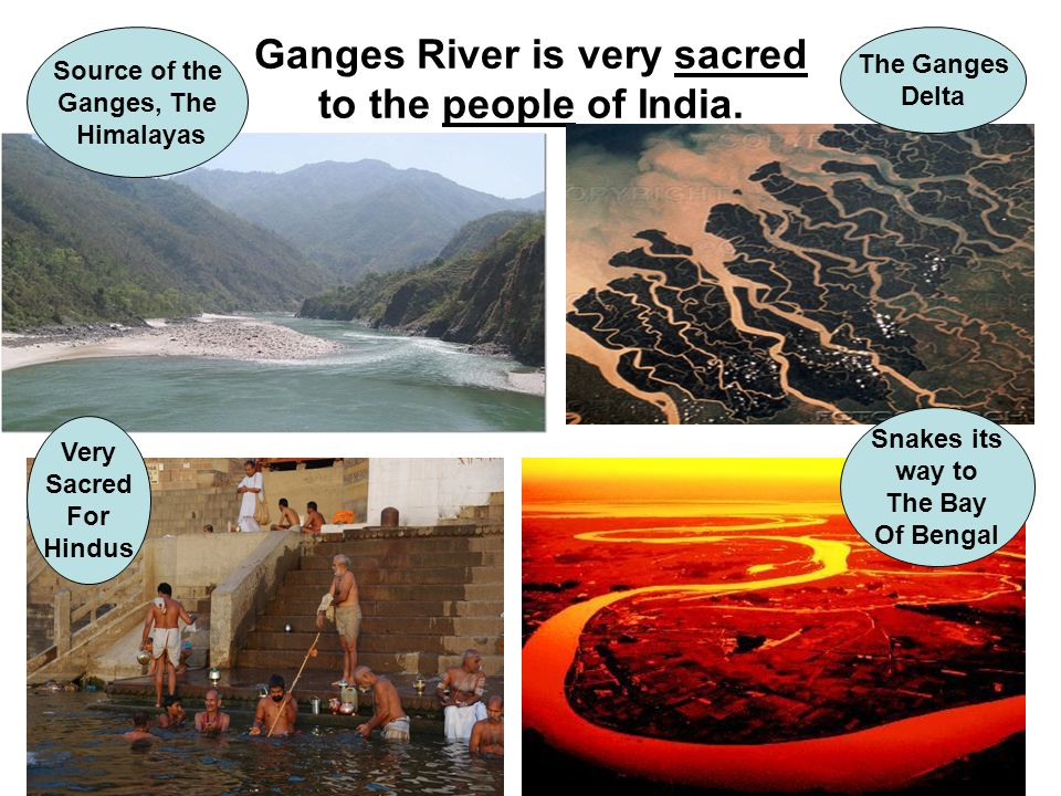Ganges River is very sacred to the people of India. Source of the Ganges, The Himalayas The Ganges Delta Very Sacred For Hindus Snakes its way to The