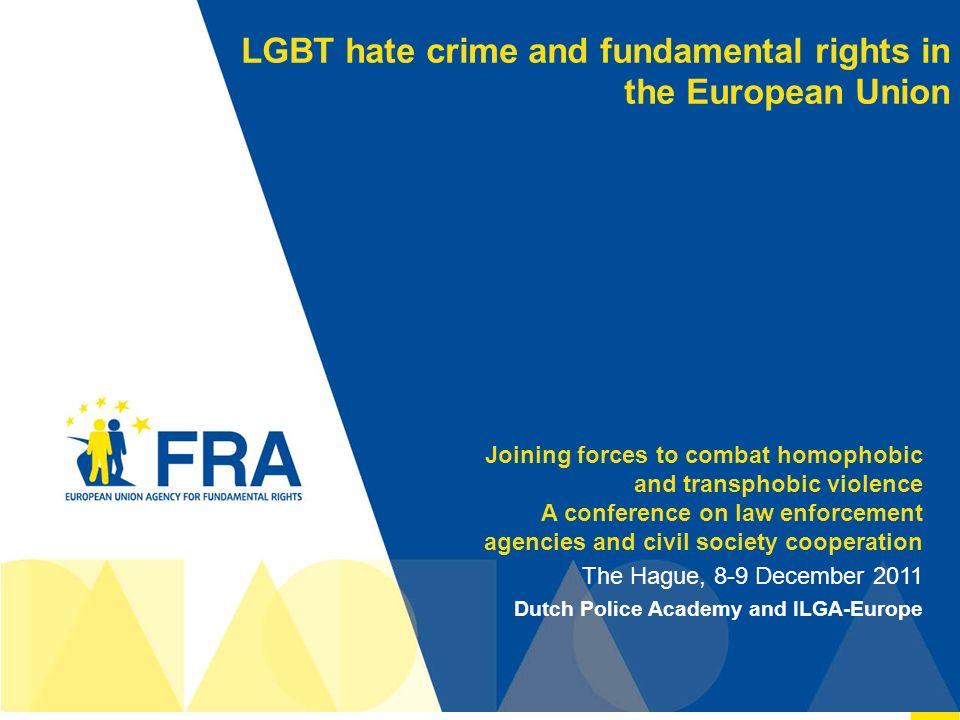 fundamental rights agency