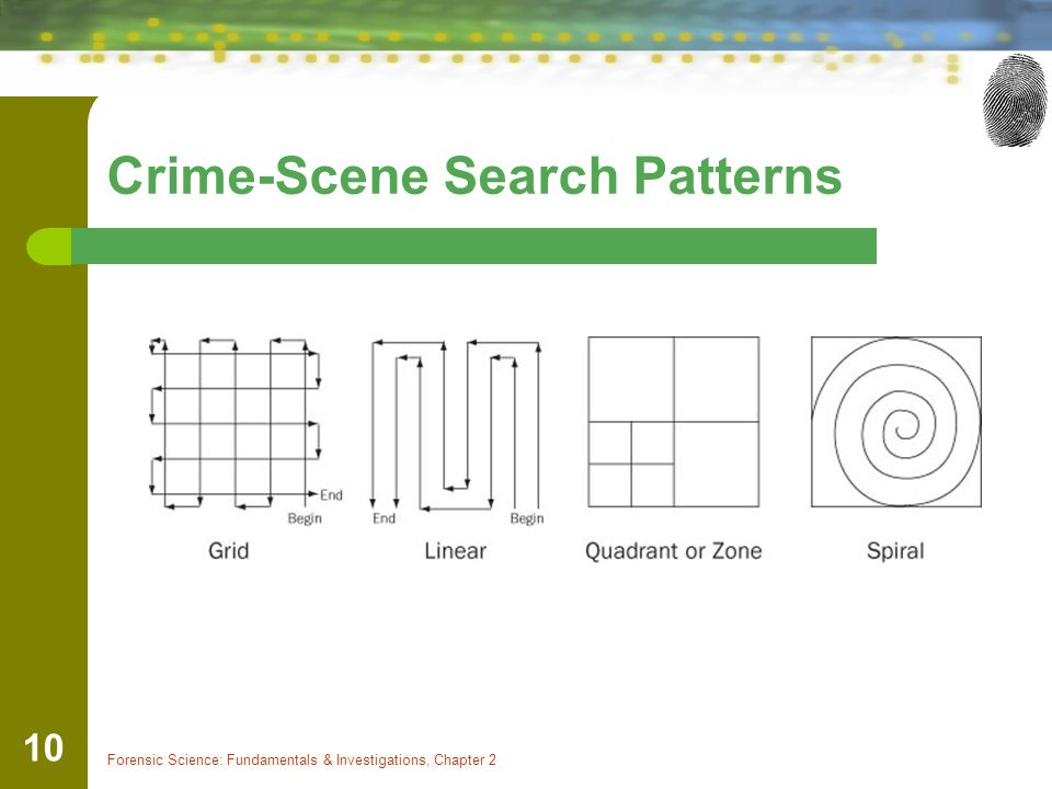 Forensic Science: Fundamentals & Investigations, Chapter 2 10 Crime-Scene Search Patterns