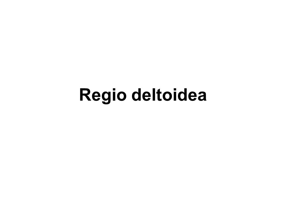 Regio deltoidea