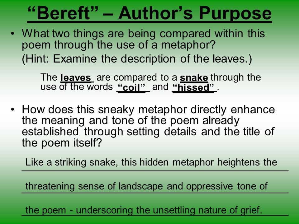the use of metaphors essay
