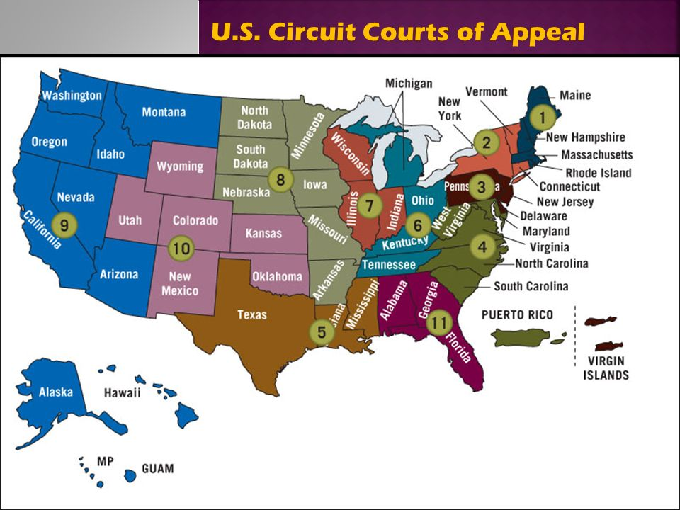 Dr Terry M Mors EdD Mors Copyright American Dual Court - Us appeals court map