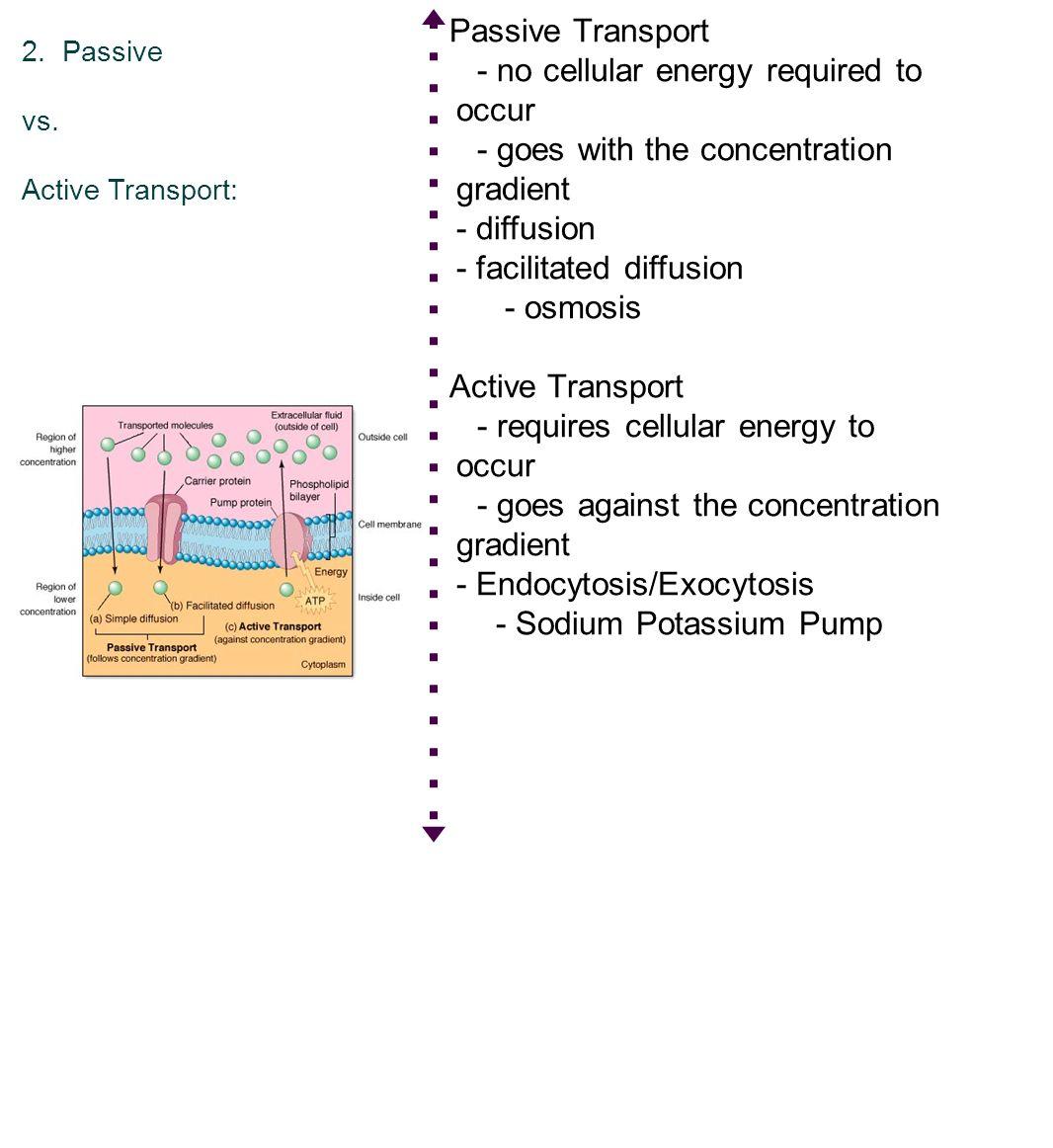 Active vs passive transport pasoevolist recent posts pooptronica Choice Image