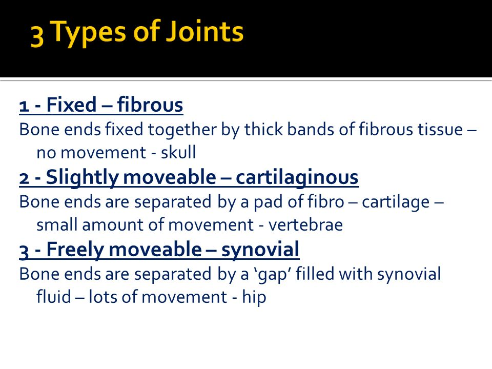 Único Unit 1 Principles Of Anatomy And Physiology In Sport Answers ...