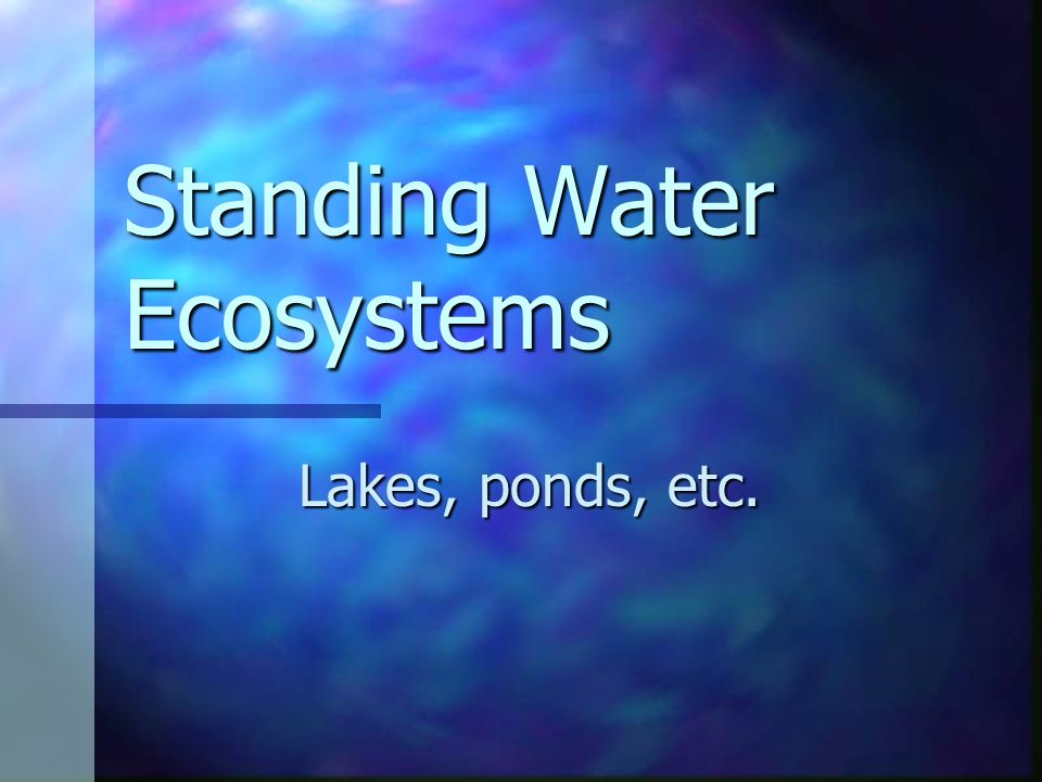Standing Water Ecosystems Lakes, ponds, etc.