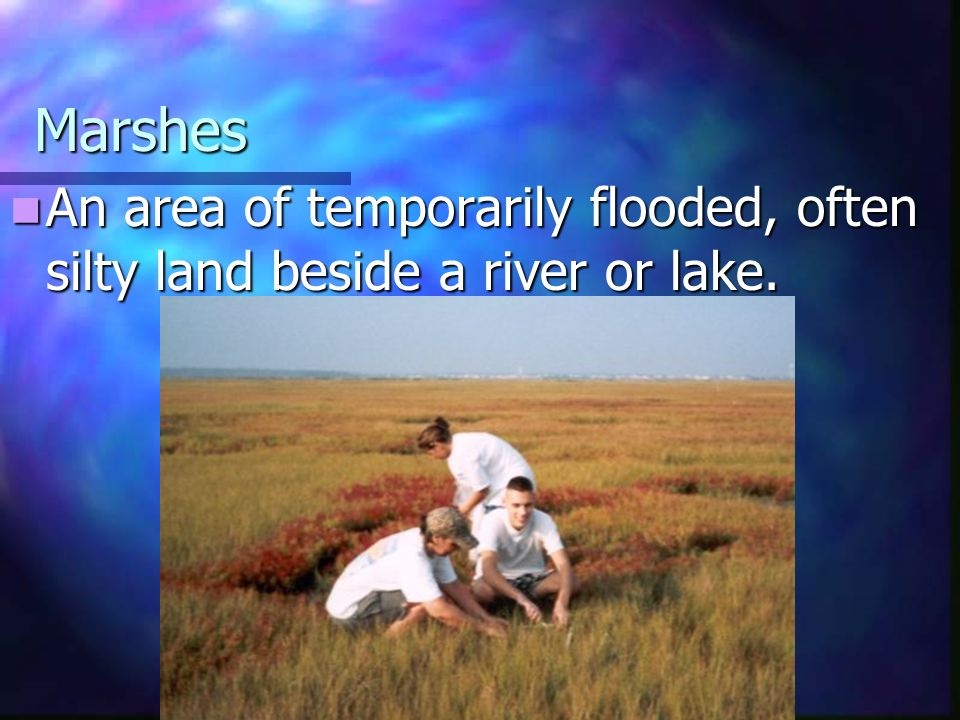 Marshes An area of temporarily flooded, often silty land beside a river or lake.