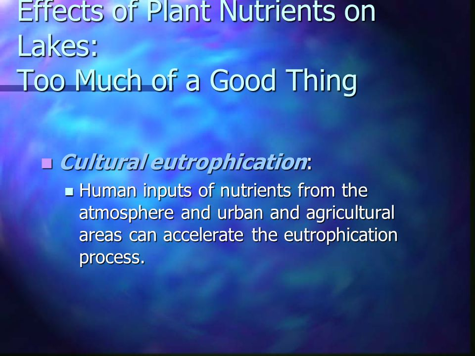 Effects of Plant Nutrients on Lakes: Too Much of a Good Thing Cultural eutrophication: Cultural eutrophication: Human inputs of nutrients from the atmosphere and urban and agricultural areas can accelerate the eutrophication process.