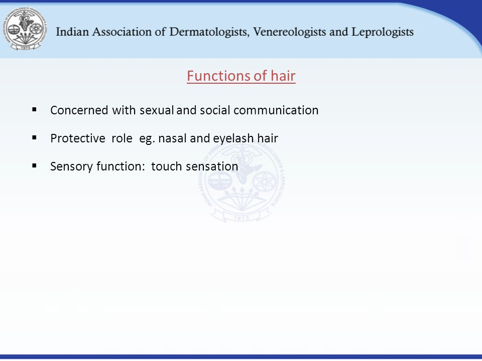Hair and nail disorders ppt video online download 5 functions of hair concerned with sexual and social communication protective role eg nasal and eyelash hair sensory function touch sensation sciox Image collections