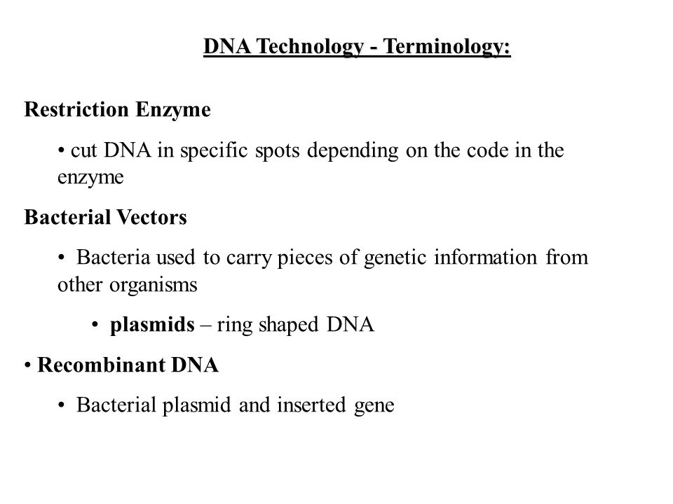 DNA Technology Terminology USES of DNA technology DNA – Dna Technology Worksheet
