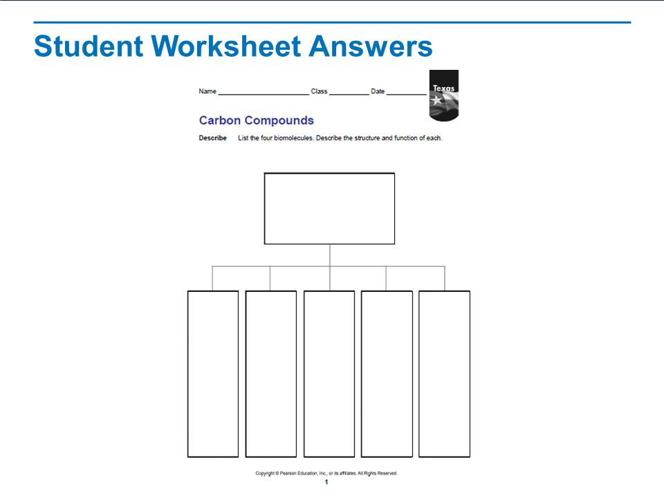 Carbon Compounds Learning Objectives Describe the unique – Carbon Compounds Worksheet
