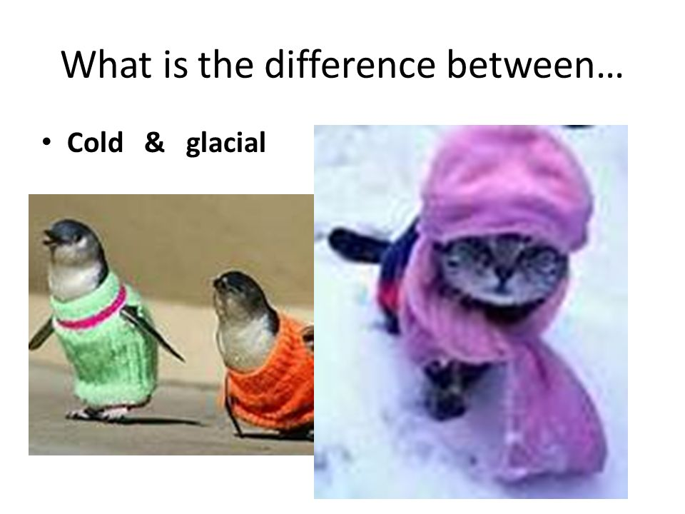 What is the difference between… Cold & glacial