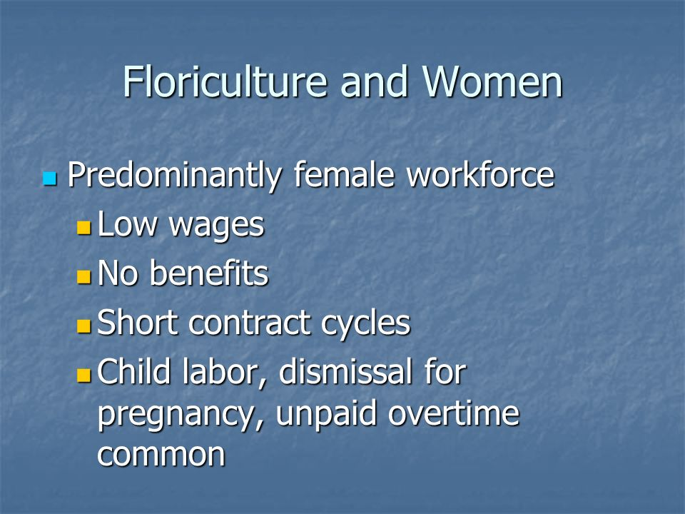 Floriculture and Women Predominantly female workforce Predominantly female workforce Low wages Low wages No benefits No benefits Short contract cycles Short contract cycles Child labor, dismissal for pregnancy, unpaid overtime common Child labor, dismissal for pregnancy, unpaid overtime common