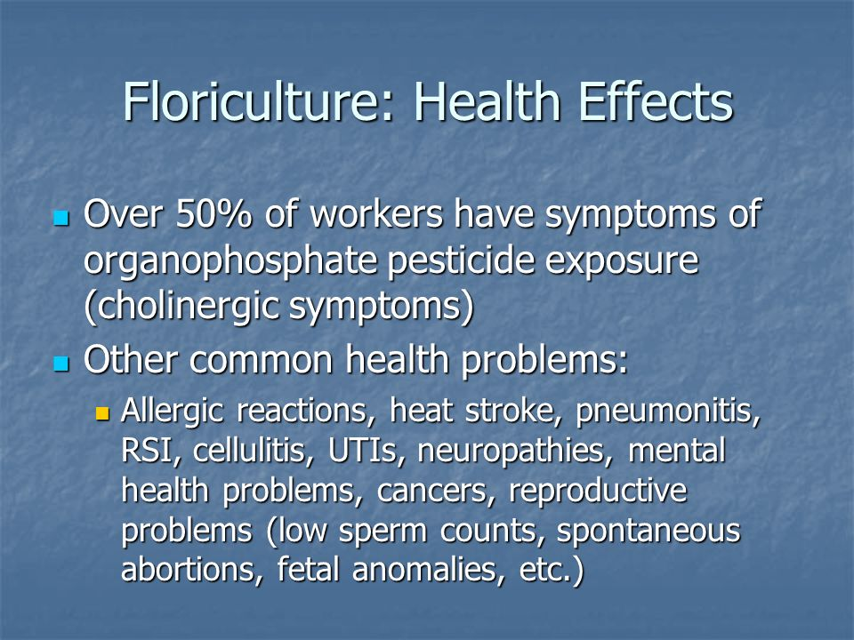 Floriculture: Health Effects Over 50% of workers have symptoms of organophosphate pesticide exposure (cholinergic symptoms) Over 50% of workers have symptoms of organophosphate pesticide exposure (cholinergic symptoms) Other common health problems: Other common health problems: Allergic reactions, heat stroke, pneumonitis, RSI, cellulitis, UTIs, neuropathies, mental health problems, cancers, reproductive problems (low sperm counts, spontaneous abortions, fetal anomalies, etc.) Allergic reactions, heat stroke, pneumonitis, RSI, cellulitis, UTIs, neuropathies, mental health problems, cancers, reproductive problems (low sperm counts, spontaneous abortions, fetal anomalies, etc.)
