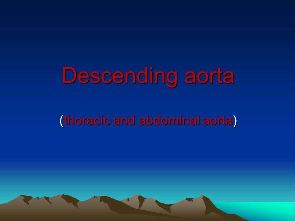 Descending aorta (thoracic and abdominal aorta)