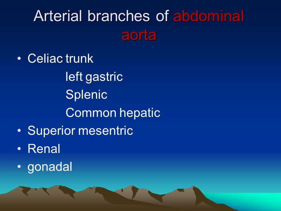 Arterial branches of abdominal aorta Celiac trunk left gastric Splenic Common hepatic Superior mesentric Renal gonadal
