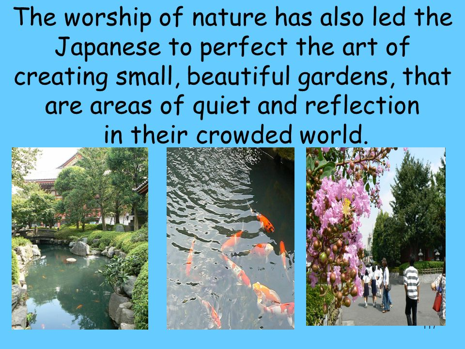 117 The worship of nature has also led the Japanese to perfect the art of creating small, beautiful gardens, that are areas of quiet and reflection in their crowded world.