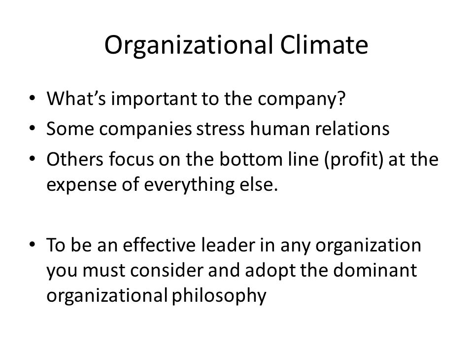Organizational Climate What's important to the company? Some companies stress human relations Others focus on the bottom line (profit) at the expense
