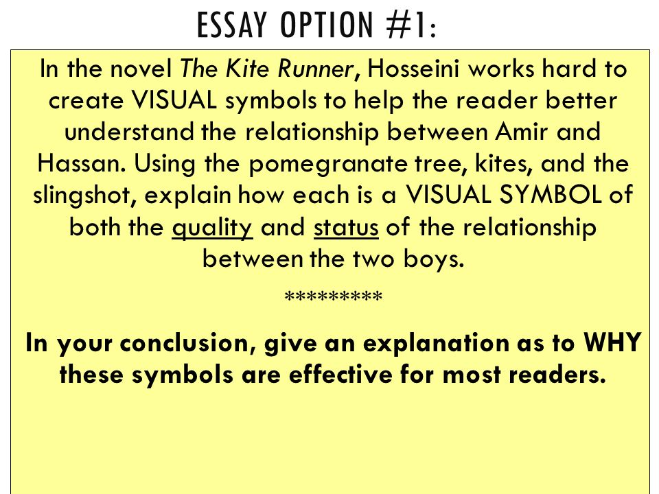 organization help before the in class writing exam on friday oct  essay option 1 in the novel the kite runner hosseini works hard to