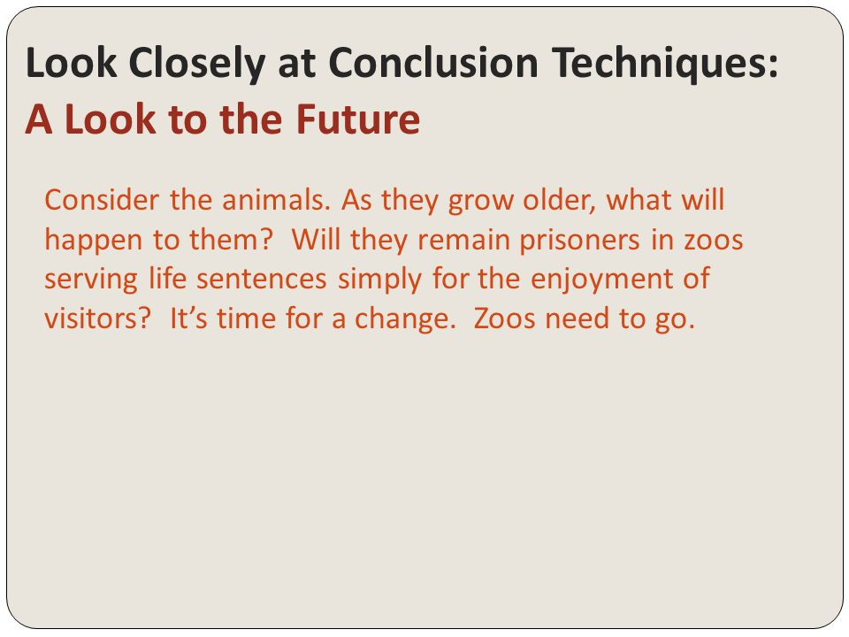 Zoos should be abolished essay   Sparks Photo Gallery