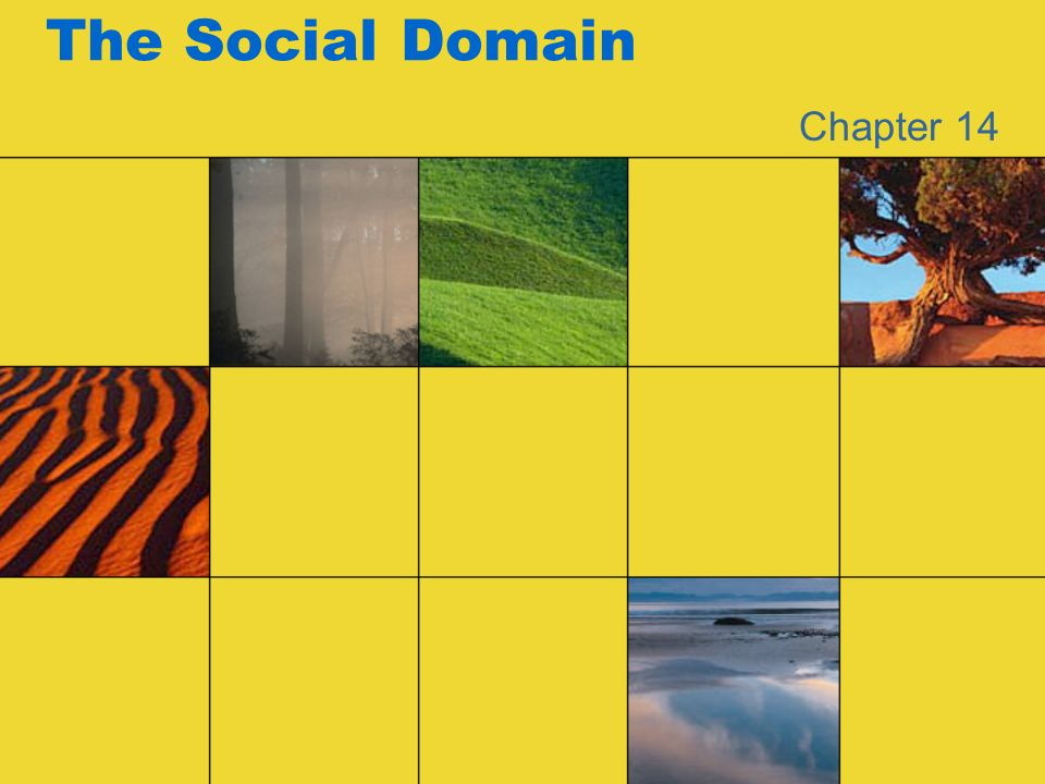 The Social Domain Chapter 14