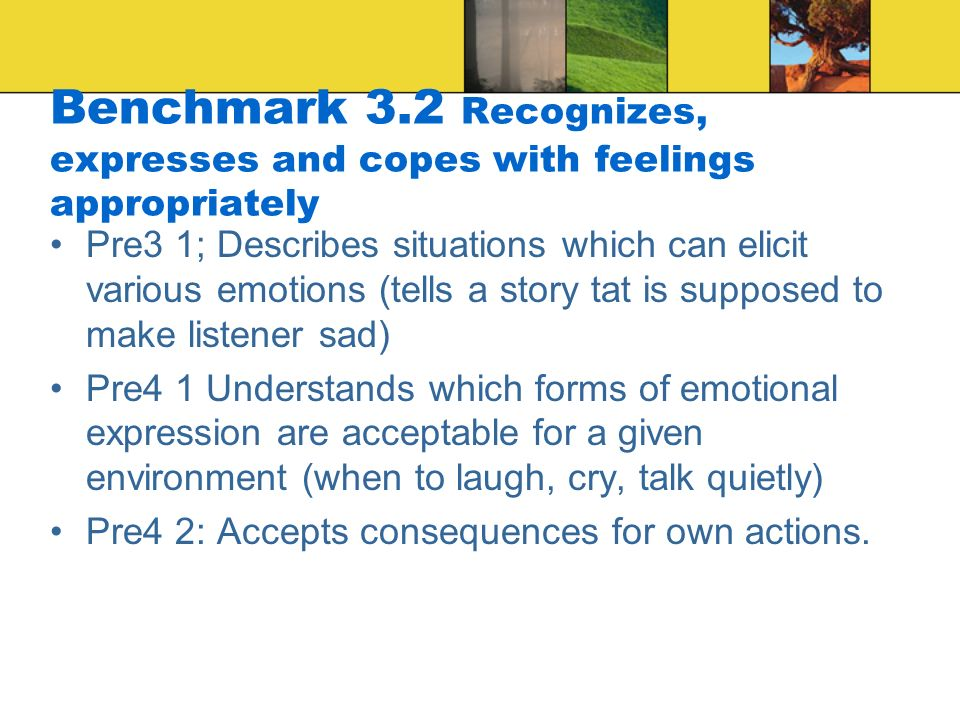 Benchmark 3.2 Recognizes, expresses and copes with feelings appropriately Pre3 1; Describes situations which can elicit various emotions (tells a story tat is supposed to make listener sad) Pre4 1 Understands which forms of emotional expression are acceptable for a given environment (when to laugh, cry, talk quietly) Pre4 2: Accepts consequences for own actions.