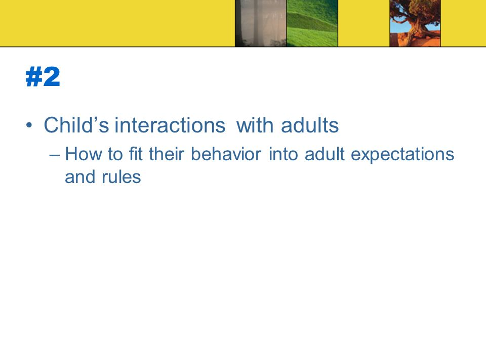 #2 Child's interactions with adults –How to fit their behavior into adult expectations and rules