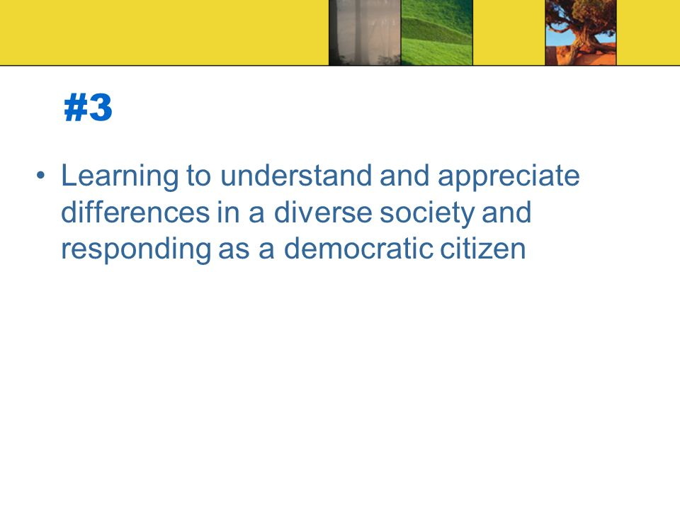#3 Learning to understand and appreciate differences in a diverse society and responding as a democratic citizen