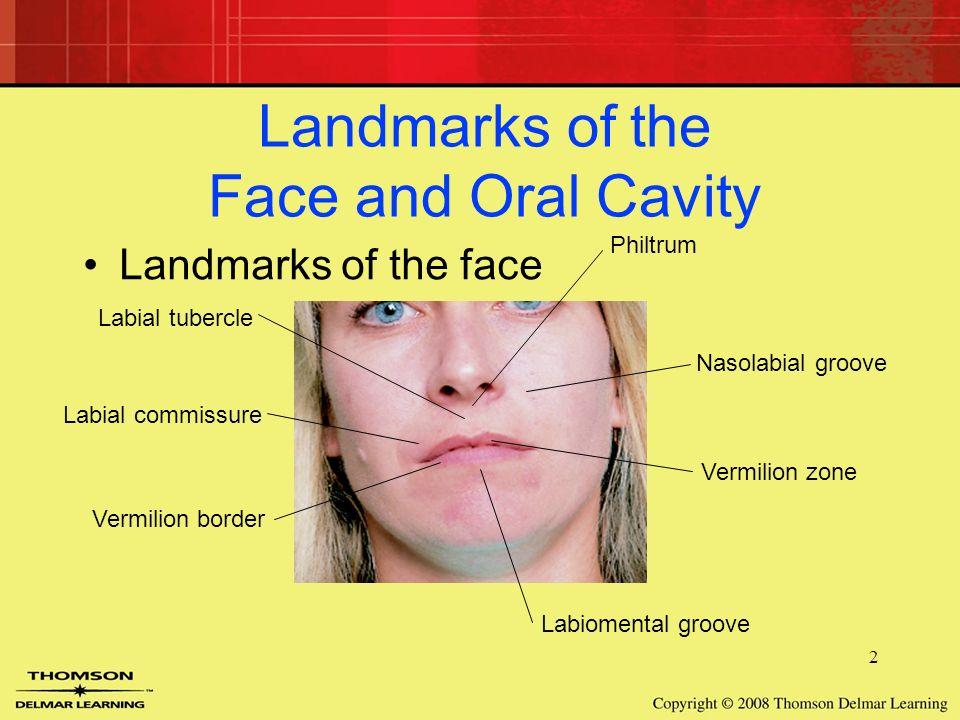 Gemtlich orale commissure anatomie fotos menschliche anatomie niedlich orale commissure anatomie fotos menschliche anatomie fandeluxe Choice Image