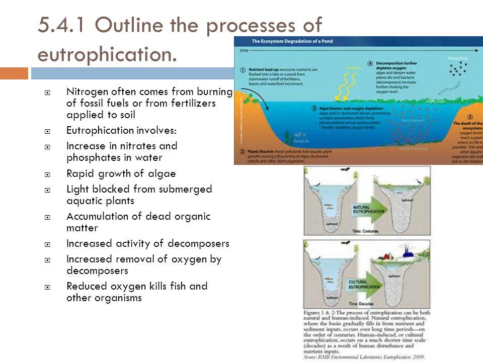 BBC Bitesize  GCSE Biology Single Science  Water