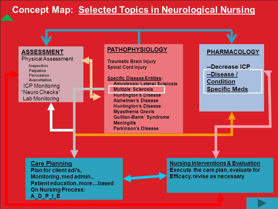nursing physical assessment